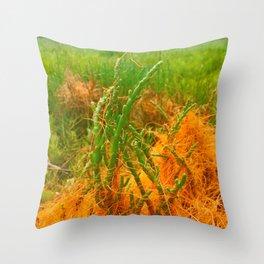 Wizards Web: Dodder Throw Pillow