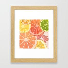 Citrus II Framed Art Print