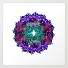 Flower Wheel  Art Print