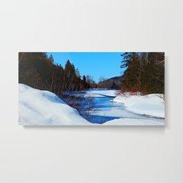 Wonderful River in Spring Metal Print