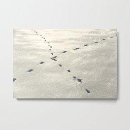 Crossed Animal Tracks in Snow Metal Print