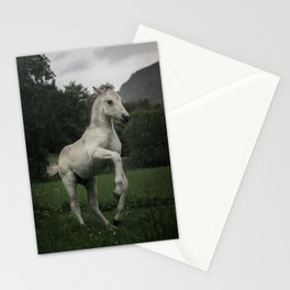 Norwegian Fjord horse Stationery Cards