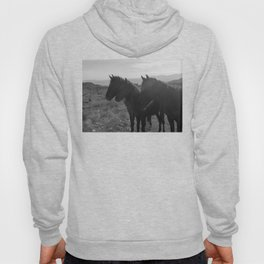 Desert Horses Hoody
