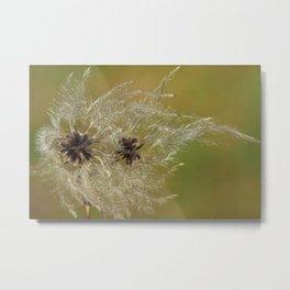 Natural Scenery Flowers Flying Metal Print
