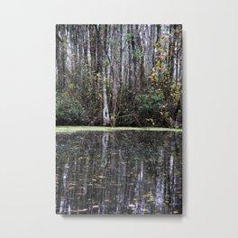 Trees reflecting in swamp water in the Okefenokee Metal Print