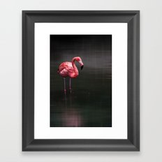 the flamingo Framed Art Print