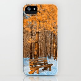 Burning Ice Forest Trail iPhone Case