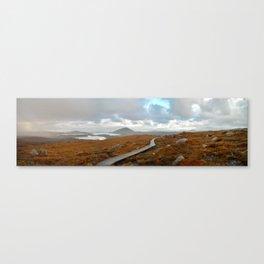 Bleak Path Canvas Print