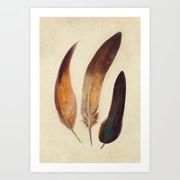 feathers Art Prints featuring Three Feathers  by Terry Fan