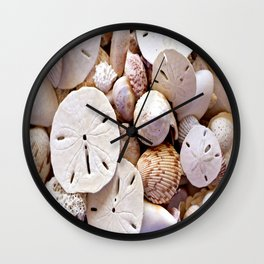 Seashells And Sand Dollars Wall Clock