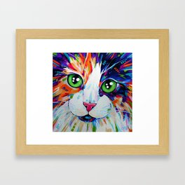 Cats in Colour 3 Framed Art Print