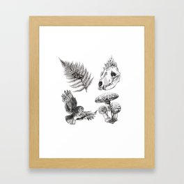 Oldwood Treasures  Framed Art Print