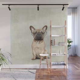 Mr French Bulldog Wall Mural