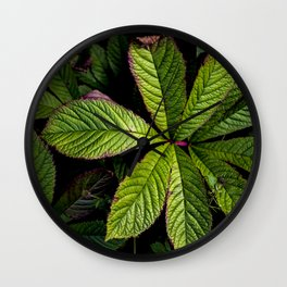 The Palmately Compound Leaf Wall Clock