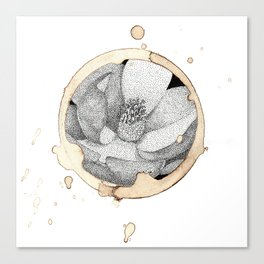 Coffee Stain Magnolia Flower-Louisiana Series Canvas Print