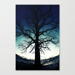 Shade of Dreams Canvas Print