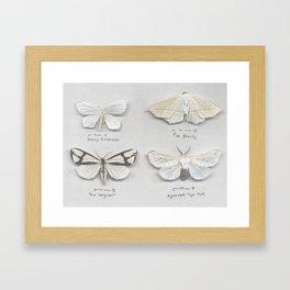 Moth Collection Framed Art Print