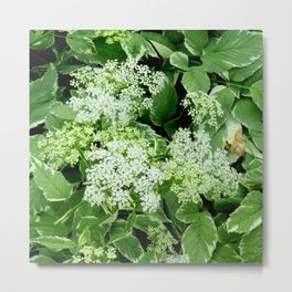 AWESOME DELICATE GREEN LACE FLOWERS Metal Print