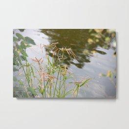 Facing the lake Metal Print