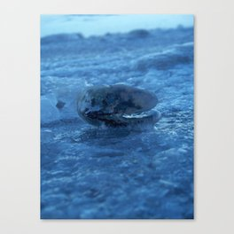 A cover of ice Canvas Print