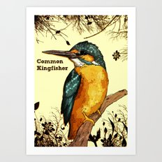 Common Kingfisher Art Print