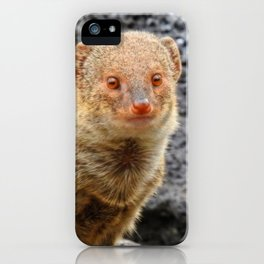 Mongoose iPhone Case