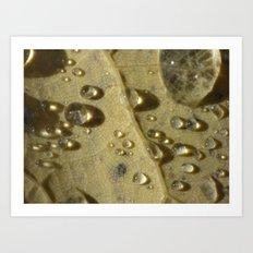 rain drops 2015  II Art Print