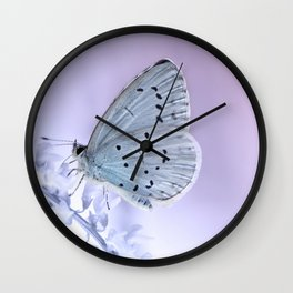 Butterfly 79 Wall Clock
