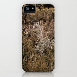 Fall Textures 2  iPhone Case