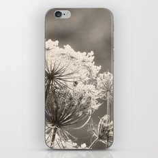Lace in the Meadow BW II iPhone & iPod Skin