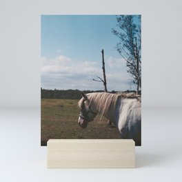Horse in fly storm Mini Art Print