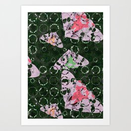 Flowers and Moths Art Print