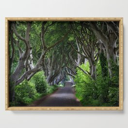 Dark Hedges, Northern Ireland. Serving Tray