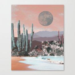 STONE GARDENS Canvas Print