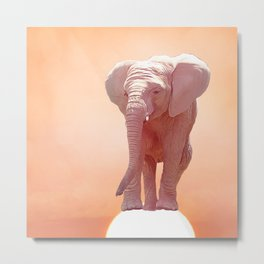 Baby elephant at sunset.Digital painting. Metal Print