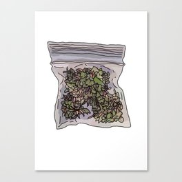 Pack of weed Canvas Print