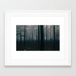 Foggy Forest at Night (Raleigh, NC) Framed Art Print