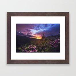 roan Framed Art Print