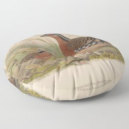 Rufous breasted Bamboo Partridge Floor Pillow