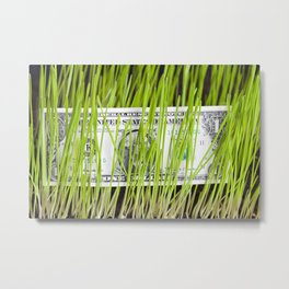 green grass and dollar Metal Print