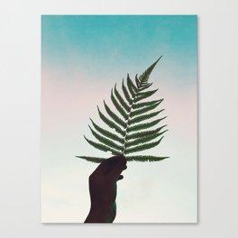 Fern Fan Canvas Print