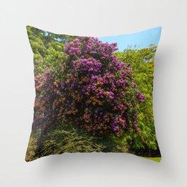 Photo USA Bougainvillea arborea Fairchild Tropical Botanic Garden Nature park Gardens Trees Parks veranera buganvilla bugambilia Throw Pillow