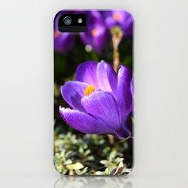 Purple Love iPhone Case