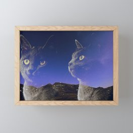 Cat and night sky Framed Mini Art Print