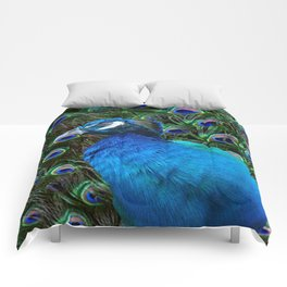 Blue Peacock and Feathers Comforters