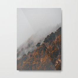 Foggy mornings in Bariloche Metal Print