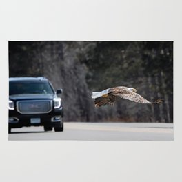 March Eagle over the highway Rug