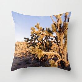 Joshua Trees at Sunrise Throw Pillow