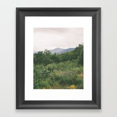 i'm just a flower among mountains Framed Art Print