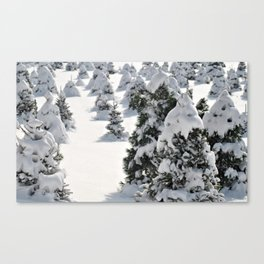 The Essence of Winter Canvas Print